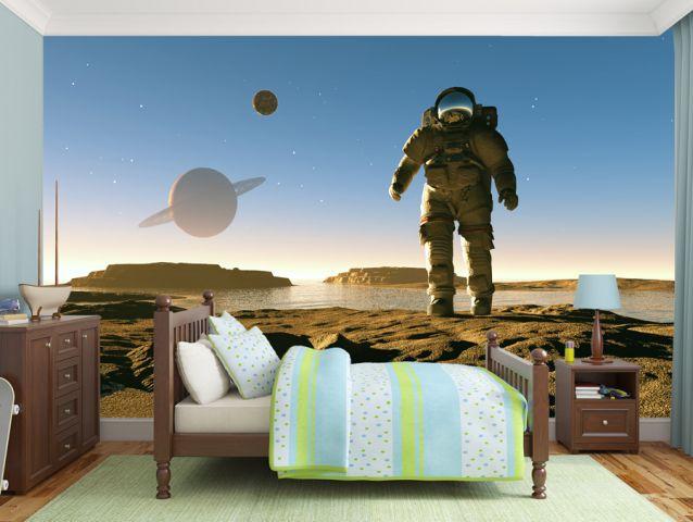 The First Man On The Moon Wallpaper טפטים מדבקות קיר